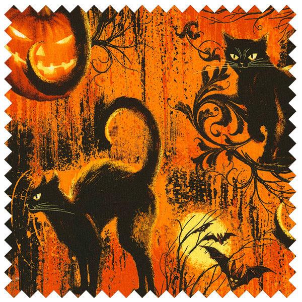 Black Cats-Halloween